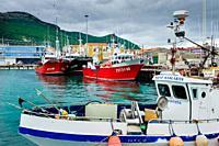 The harbour at Puerto de Santona, Cantabria, Spain.