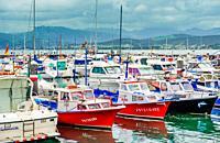 Marina at Puerto de Santona, Cantabria, Spain.