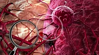 Concept of Cancer Cell in human body
