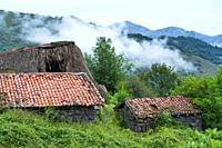 Landscape in the Braña de Tuiza in the council of Teverga, in the Las Ubiñas-La Mesa Natural Park. Asturias. Spain. Europe.