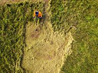 Grass cutter in action. Aerial view.