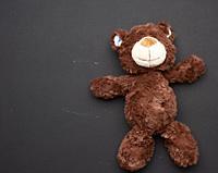 brown teddy bear on a black chalk board background, back to school, copy space.