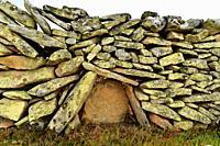 Dry stone wall detaill. Sayago, Zamora province, Castilla y Leon, Spain.