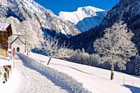 Gerstruben, ein ehemaliges Bergbauerndorf im Dietersbachtal bei Oberstdorf, dahinter das Rauheck, 2384m,Allgäuer Alpen, Allgäu, Bayern, Deutschland, E...