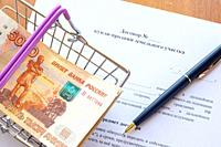 There is a bundle of money in a grocery basket and a ballpoint pen on the land purchase agreement.