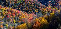 Autumn Scenics in the Great Smoky Mountains National Park.