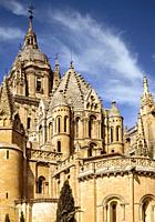 The Cathedral. Salamanca. Spain. It was constructed between the 16th in and 18th centuries in two styles: late Gothic and Baroque. Building began in 1...