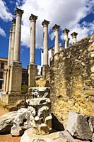 Cordoba, Cordoba Province, Andalusia, southern Spain. Columns with Corinthian capitals of 1st century AD Roman temple.