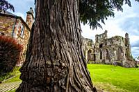 St Mary´s Abbey, Melrose Abbey, ruined monastery of the Cistercian order, Melrose, Scottish Borders, Scotland, United Kingdom, Europe.