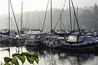Stockholm, Sweden Sailboats in a marina at Skanstull in the early morning fog.