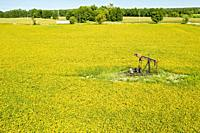 North Benton, Ohio - An old oil well in a yellow soybean field in early autumn.