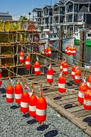 Fishing buoys hanging to dry after being painted at restored 19th century working fishing village of Fisherman's Cove near Halifax, Nova Scotia, Canad...