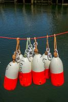 Fishing buoys hanging to dry after being painted at restored 19th century working fishing village of Fishermans Cove near Halifax, Nova Scotia, Canada...