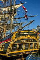 The HMS Bounty was built as a movie prop in 1960 for the 1962 MGM release of Mutiny on the Bounty, Tall ship festival in the harbor of Halifax, Nova S...