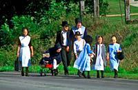Amish family of 10 with parents and 8 children walk along the side of the road going to market.