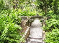 Entrance to Fern Walk under aqueduct at Historic Spanish Point in Osprey Florida in the United sTates.