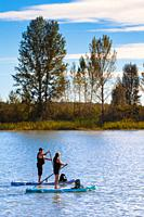 Couple paddleboarding in the Steveston harbour inlet British Columbia Canada.