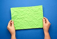 two female hands are holding blank crumpled green sheet of paper on blue background, copy space.