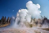 Grand Geyser erupting, Upper Geyser Basin, Yellowstone National Park, Wyoming, USA.