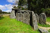 dolmen de Cunha Baixa, entre 3000 y 2500 aC, Beira Baixa, Portugal, europa.
