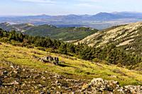 The Rozas Hills in the Sierra Norte and Sierra de Guadarrama on the background in spring time. Madrid. Spain. Europe.