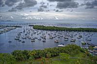 Coconut Grove Marina. Florida. USA.