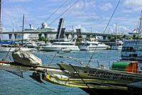 Bayside Marina. Miami. Florida. USA.