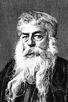 Jean-Louis-Ernest Maissonier, French painter and sculptor. 1815-1891. Antique illustration. 1891.