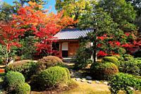 Kyoto Prefecture, Japan