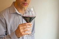 Wine taster smelling a glass of red wine.