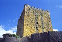 Medieval castle. Lezana de Mena, Burgos province, Castilla Leon, Spain.