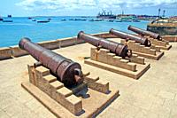 ancient cannons on the seafront, Stone Town, Unguja Island, Zanzibar