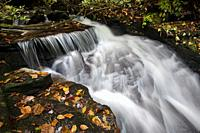 Cascade on Reece Place Falls - Headwaters State Forest, near Brevard, North Carolina, USA.