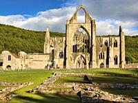 Tintern Abbey, Monmouthshire, Wales, United Kingdom. The Cistercian abbey fell into ruin aftr the DIssolution of the Monasteries in the reign of King ...