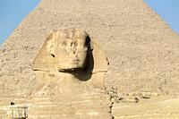 The great Sphinx with the pyramid of Khafre in the background, Giza, Cairo, Egypt.
