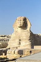 The great Sphinx, Giza, Cairo, Egypt.
