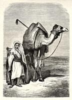 Young Egyptian camel driver dressed in typical clothing from Sinai peninsula, Egypt. Old XIX century engraved from Travels in Sinai Le Tour du Monde 1...