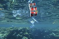 RED SEA, SHARM EL SHEIKH, EGYPT - OCTOBER 18-26, 2020: Plastic and other debris floats underwater near coral reef. Plastic garbage polluting seas and ...