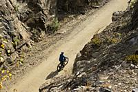 A cyclist rides in the Myra Canyon, Kettle Valley Rail Trail, Okanagan, British Columbia, Canada.