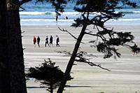 A group of people walk on the beach near Tofino, BC, Canada