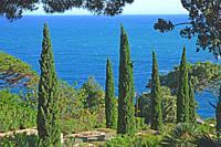 Botanical Garden in Blanes, Spain.