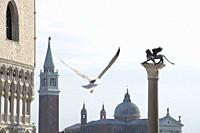 Venice Veneto Italy on January 20, 2019: The famous ancient winged lion sculpture with flying seagull at Saint Marks square.