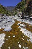 Barranco de las Angustias, Taburiente River, Caldera de Taburiente National Park, Biosphere Reserve, ZEPA, LIC, La Palma, Canary Islands, Spain, Europ...