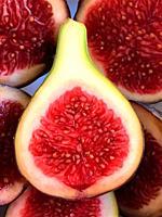 Cut black fig.