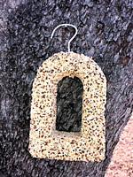 Birdseed block on a tree trunk