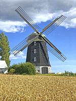 Windmill at wheat field in Hagestad, Scania, Swiden, Scandinavia.