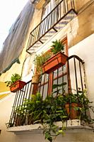 An old balcony with plants in Ciutat Vella. València. Spain. 2020.