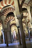 Arches and columns, Cathedral of our Lady of the Assumption Great Mosque of Córdoba, Cordoba, Andalusia, Spain, Europe.
