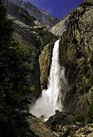 Lower Yosemite Falls, Spring.