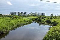 A small stream at Matang, Sarawk, East Malaysia